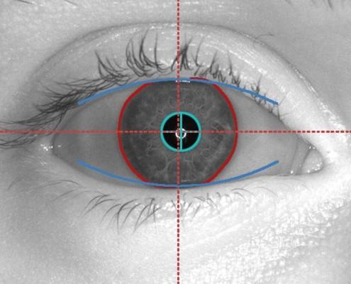 Papillon Zirkon Eye Scanner